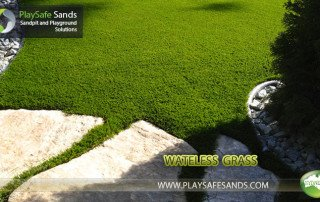 WATELESS GRASS